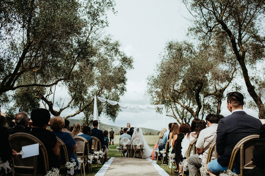 olive wedding sardinia
