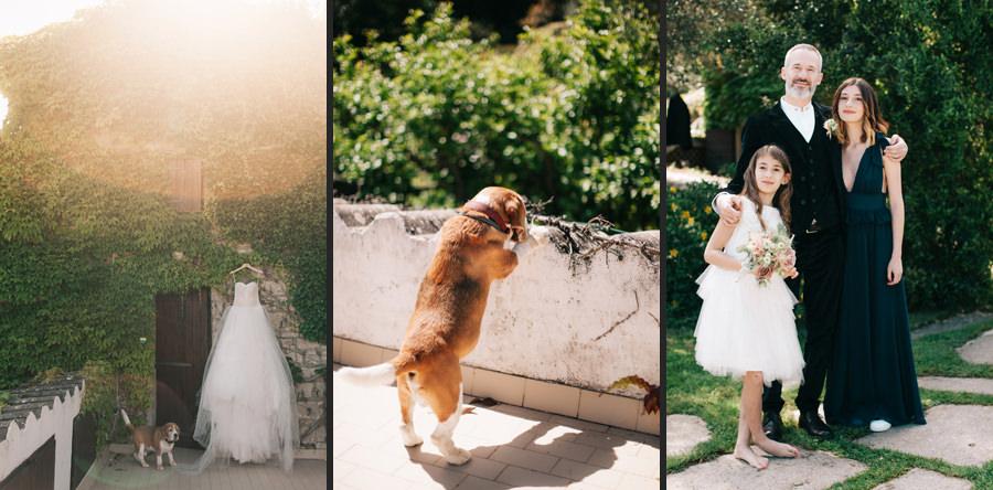 agnata di de andrè wedding